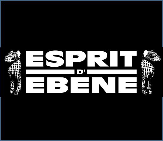 Esprit d'EBENE